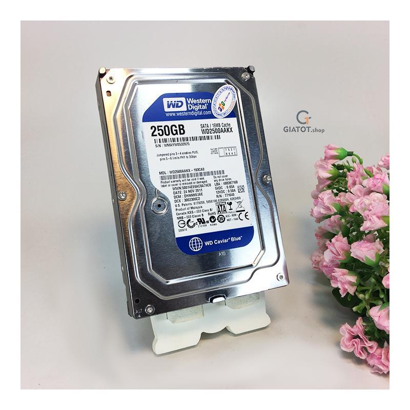 Ổ Cứng WD 250gb / 320gb / 500gb / 1TB,HDD Western ( Blue ) Dùng Cho Máy Tính để Bàn, ổ Cứng Camera . Bảo Hành 2 Năm. Có Giá Cực Tốt