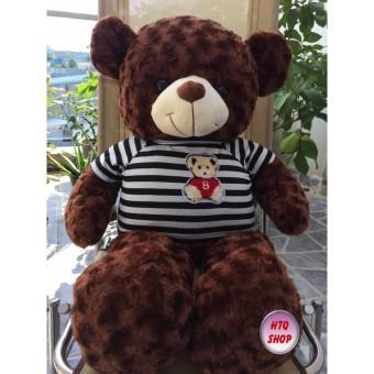 Gấu Bông Teddy Màu Nâu - Khổ Vải 1m Cao 80cm Dh01 By Jan Home.