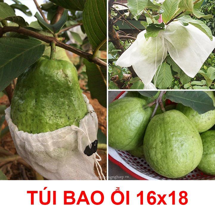 Bao trái cây Hoa Mai 16x18 100 cái