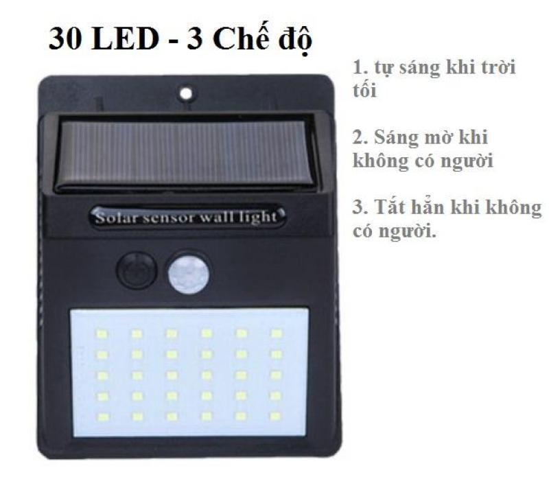 Đèn năng lượng mặt trời Solar 30 LED siêu sáng, 3 chế độ sáng (Đen)