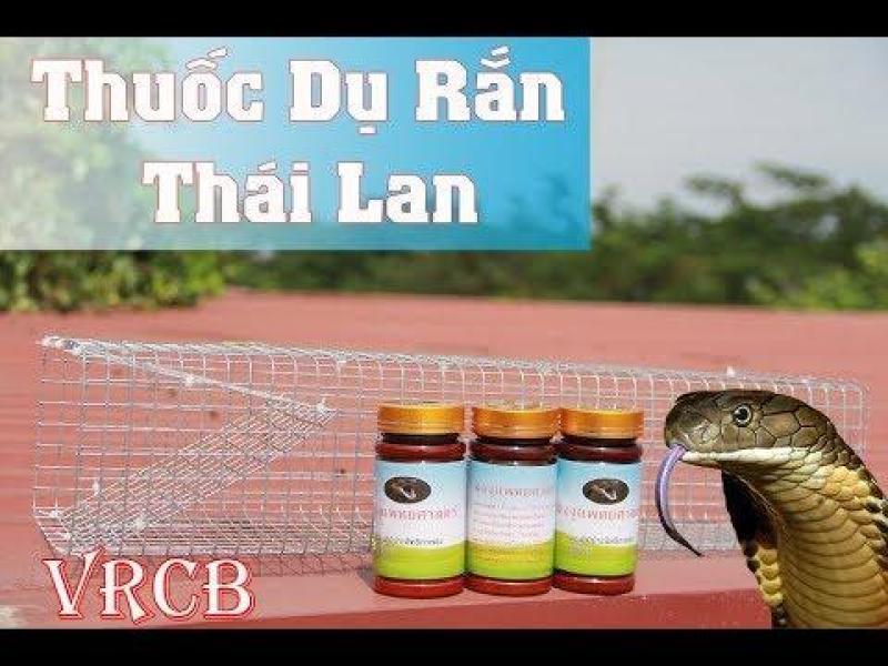 Rắn Thái Lan - Chuyên Dùng Bẫy Rắn