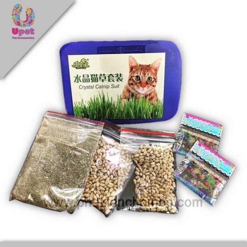 SP1191 - Cỏ trồng cho mèo combo (Đồ thú cưng Hoamy)