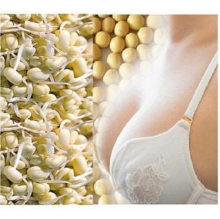 1kg Mầm Đậu Nành Nguyên xơ - Uống Tăng Kích Cỡ Ngực Phụ Nữ - Có Tặng Quà thumbnail