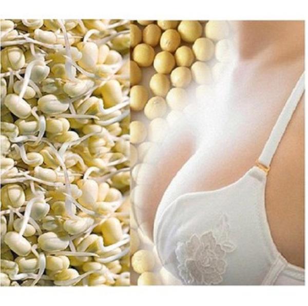 1kg Mầm Đậu Nành Nguyên xơ - Uống Tăng Kích Cỡ Vòng 1 Phụ Nữ - Có Tặng Quà giá rẻ