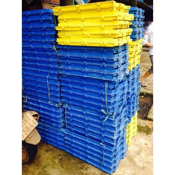 Miếng Lót Sàn Nhựa Vệ Sinh Cho Chó Mèo 40X55cm