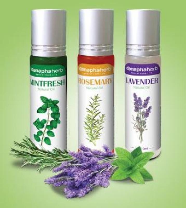 Combo Dầu gió bi lăn thảo dược 3 mùi Lavender, Mint Fresh, Rosemary nhập khẩu