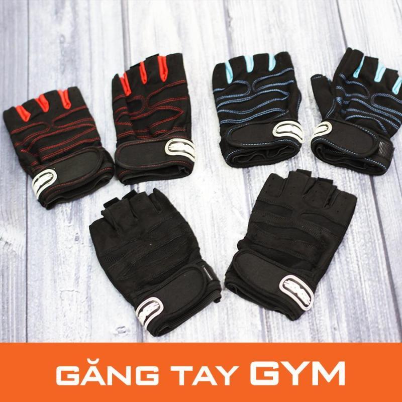 Găng tay tập gym Zinsport