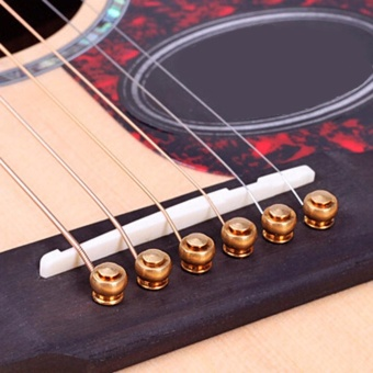 6pcs One Set New Acoustic Guitar Bridge Pins Saddle Nut Real Bone - intl