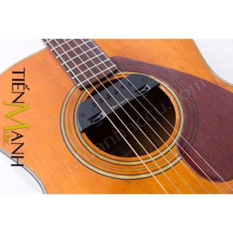 Acoustic Guitar Pickup Skysonic T-903 (Bộ thu âm Đàn Guitar)