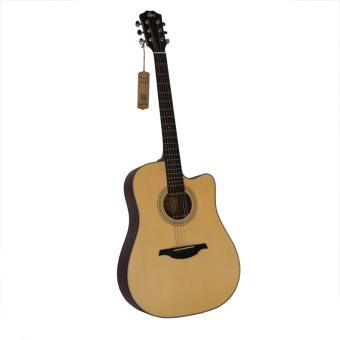 Đàn guitar acoustic Rex D1C NM
