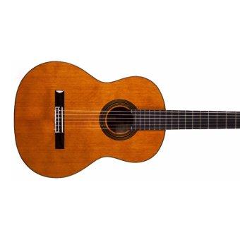 Đàn guitar classic Aria AK25(Vàng)