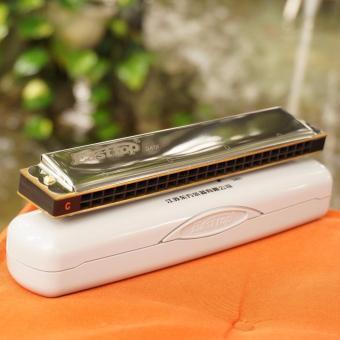 Kèn Harmonica Tremolo Easstop T2401 24 lỗ