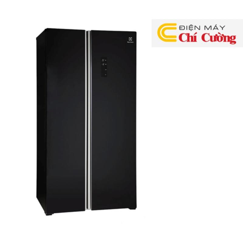 Tủ lạnh Electrolux ESE6201BG-VN (Đen)