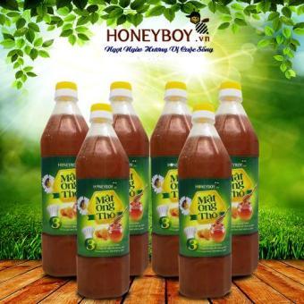 Bộ 6 Mật ong Thô HONEYBOY 1000ml