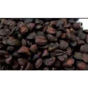 hạt dổi rừng 100g