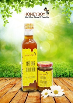 Mua Bộ Mật ong thiên nhiên HONEYBOY 100ml và Mật ong sữa chúa HONEYBOY 250ml giá tốt nhất