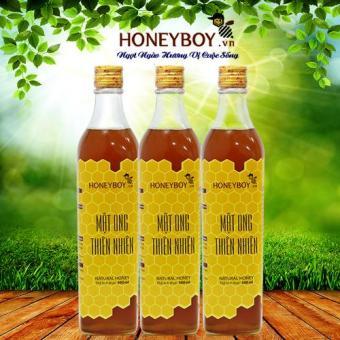 Bộ 3 Mật ong thiên nhiên Honeyboy 500ml
