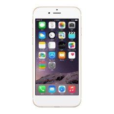 Lưu ý khi mua Apple iPhone 6 Plus 64GB (Vàng) –