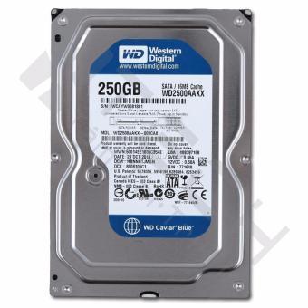 HDD 250G Western ( Blue ) Máy tính để bàn