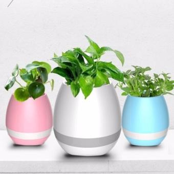 Loa bluetooth 3in1 kiêm chậu trồng cây cảm ứng âm thanh kỳ diệu