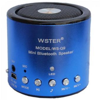 Loa Bluetooth mini Wster WS-Q9 (Xanh) - 8839153 , WS489ELAA172RWVNAMZ-1773410 , 224_WS489ELAA172RWVNAMZ-1773410 , 160000 , Loa-Bluetooth-mini-Wster-WS-Q9-Xanh-224_WS489ELAA172RWVNAMZ-1773410 , lazada.vn , Loa Bluetooth mini Wster WS-Q9 (Xanh)