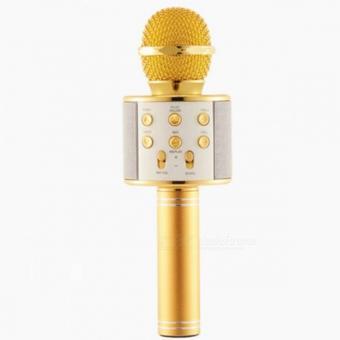 Micro hát karaoke Bluetooth 3in1 kèm loa WS-858 - 10294800 , OE680ELAA9AI6TVNAMZ-18426563 , 224_OE680ELAA9AI6TVNAMZ-18426563 , 420000 , Micro-hat-karaoke-Bluetooth-3in1-kem-loa-WS-858-224_OE680ELAA9AI6TVNAMZ-18426563 , lazada.vn , Micro hát karaoke Bluetooth 3in1 kèm loa WS-858