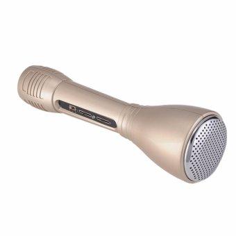 Micro Hát Karaoke Kèm Loa 3 trong 1 kết nối Bluetooth Z1