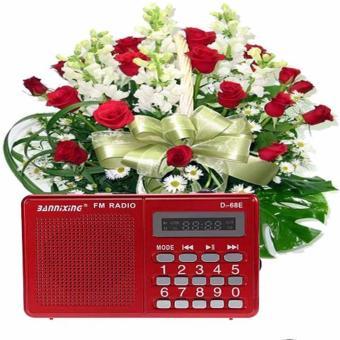 RADIO KIÊM MÁY NGHE NHẠC D-68E