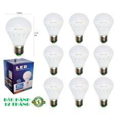 10 Bóng đèn LED 12W tiết kiệm điện sáng trắng POSSON LB-E12