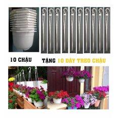 10 chậu nhựa treo trồng cây trang trí nhà cửa chuyên dụng (tặng 10 dây treo)