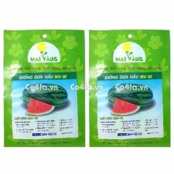 Bộ 2 gói hạt giống Dưa hấu (Đỏ)