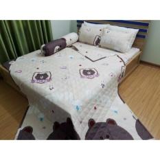 Nơi Bán Bộ Chăn Drap Giường Cotton Lụa Gấu Brown Tmark 160 x 200cm