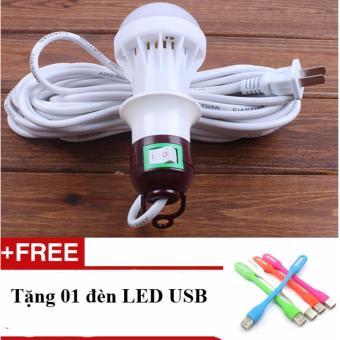 Dây và bóng đèn Led 10m chiều dài dây + 01 đèn Led USB
