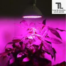 Đèn led trồng cây, giúp cây phát triển trong nhà 6W 220V