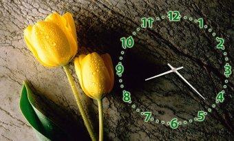 Đồng hồ để bàn Hoa tulip vàng Suemall DB140701