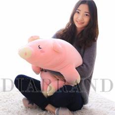 Gối ôm heo bông màu hồng dài 70cm-OHNPNG70(nhà bán hàng Diabrand)