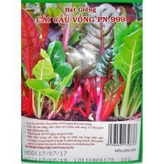 Hạt giống Cải Cầu Vòng PN 99 - 10g