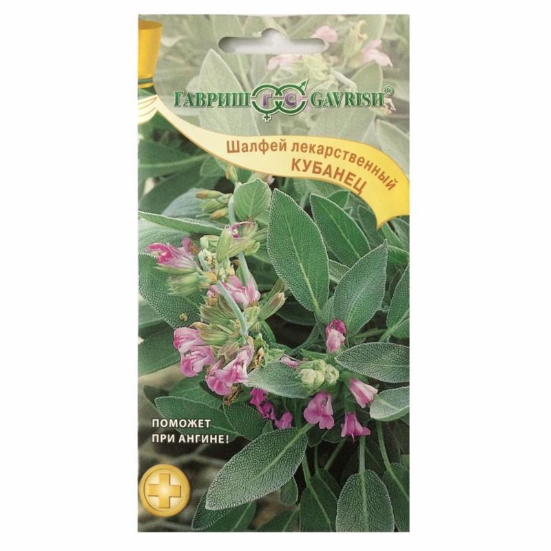 Hạt giống cây xô thơm (Salvia Officinalis)