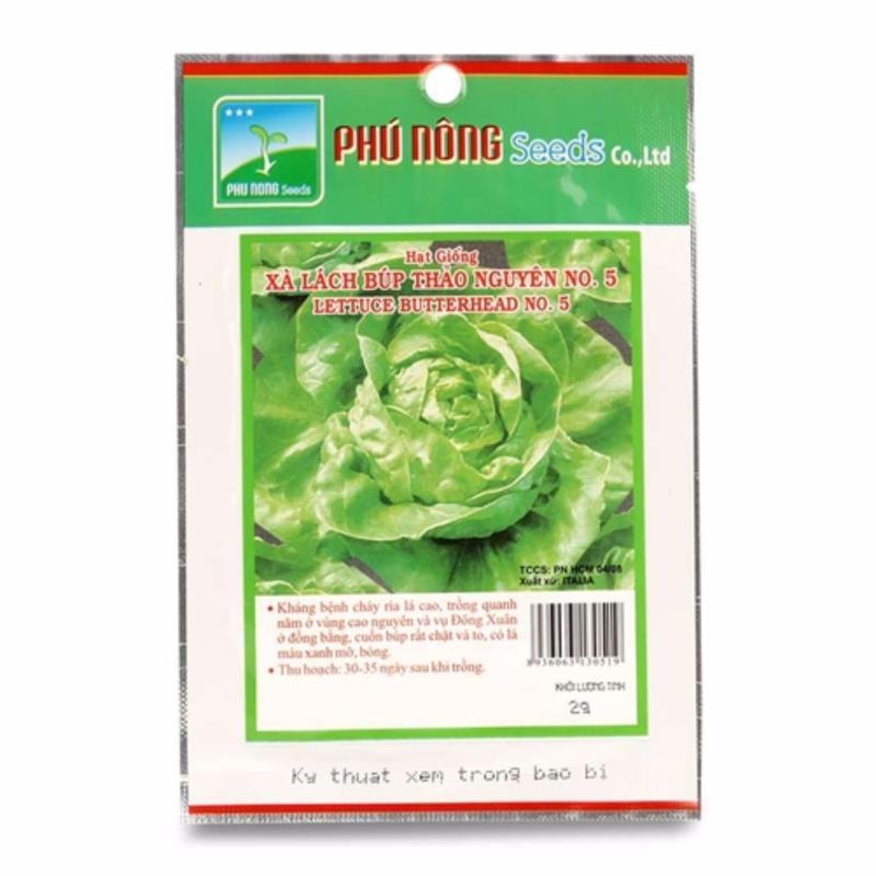 Hạt giống xà lách búp thảo nguyên PN - 2g