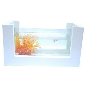 Bể cá mini khung gỗ cây nhựa cam