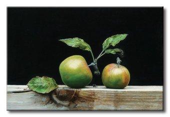 Thế Giới Tranh Đẹp Static-180 - Tranh in canvas sơn dầu