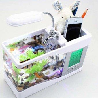 Bể cá mini phong thủy cho bàn làm việc