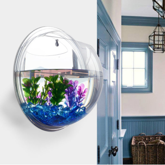 Plant Wall Hanging Bubble Aquarium Bowl(Mirror) (Intl)
