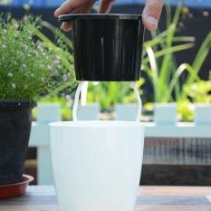 Makiyo Anti-corrosion Self-watering Flower Pot Plastic Durable Planter House Gardening Nursery Tools (L) - intl