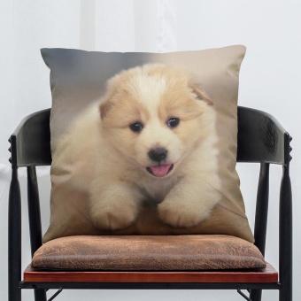 Pet Dog Animal Cotton Linen Throw Pillow Case Cushion Cover Home Decor E - intl - 8541536 , OE680HLAA8GLJ3VNAMZ-16420174 , 224_OE680HLAA8GLJ3VNAMZ-16420174 , 306000 , Pet-Dog-Animal-Cotton-Linen-Throw-Pillow-Case-Cushion-Cover-Home-Decor-E-intl-224_OE680HLAA8GLJ3VNAMZ-16420174 , lazada.vn , Pet Dog Animal Cotton Linen Throw Pillow