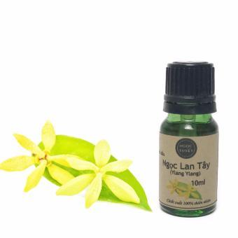 Tinh dầu hoa ngọc lan tây Ngọc Tuyết 10ml thơm tinh tế