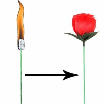 Đạo cụ ảo thuật:Ngọn đuốc biến kỳ ảo thành bông hoa hồng