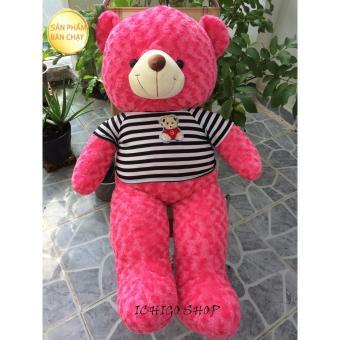 Gấu bông Teddy Cao Cấp khổ vải 1m2 Cao 1M màu Đỏ hàng VNXK