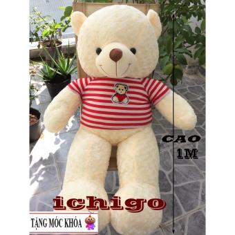 Gấu bông Teddy Cao Cấp khổ vải 1m2 Cao 1M màu Kem