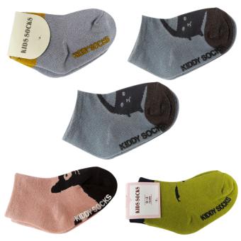 Bộ 5 đôi Tất Kiddy Socks cho bé yêu từ 6 tháng- 3 tuổi - Phú Đạt